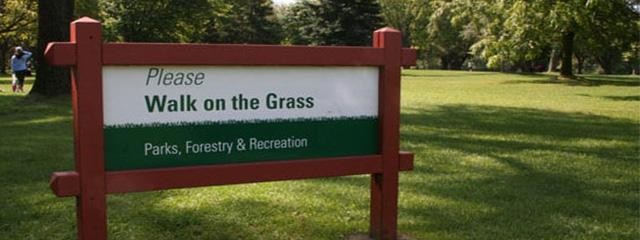 Please Walk on the Grass